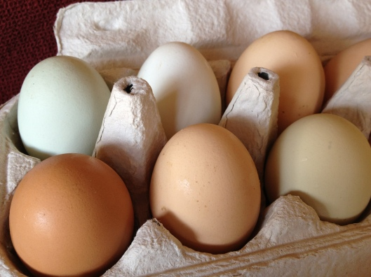 Farm Fresh Eggs Recipe via Tsiporah Blog