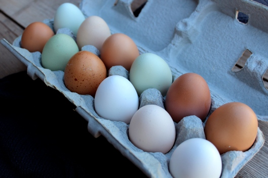 Organic, Farm Fresh, Cage Free Eggs via Tsiporah Blog