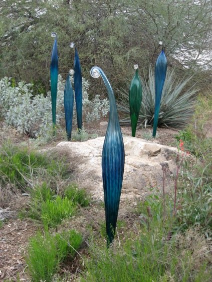 Phoenix Travel Guide - Botanical Garden | via Tsiporah Blog