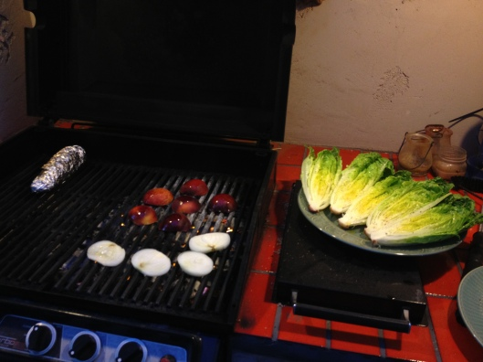Summer Grilling Recipes via Tsiporah Blog