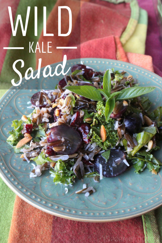 Wild Kale Salad Recipe - Autumn Salad Recipe | via Tsiporah Blog